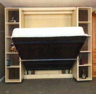 Hidden Bed Library Bed